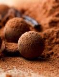 czekoladowa trufla Fotografia Stock