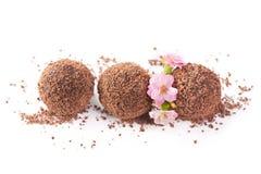 czekoladowa trufla Obrazy Royalty Free