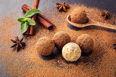 Czekoladowa trufla, Truflowi czekoladowi cukierki z kakaowym proszkiem Ho Fotografia Royalty Free