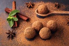 Czekoladowa trufla, Truflowi czekoladowi cukierki z kakaowym proszkiem Ho Zdjęcia Royalty Free