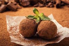 Czekoladowa trufla, Truflowi czekoladowi cukierki z kakaowym proszkiem Ho Obrazy Stock