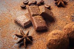 Czekoladowa trufla, Truflowi czekoladowi cukierki z kakaowym proszkiem Ho Zdjęcie Stock