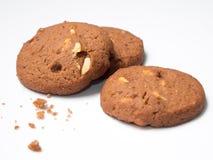 czekoladowe ciastka Obraz Stock