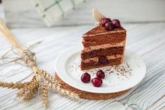 czekoladowe ciasto ciemności Fotografia Stock