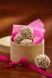czekoladowe trufle Obraz Stock