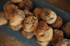Czekoladowe trufle w kakao kropiącym Na łupkowej desce na drewnianym tle Zakończenie, tekstura obrazy stock