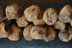 Czekoladowe trufle w kakao kropiącym Na łupkowej desce na drewnianym tle Zakończenie, tekstura fotografia royalty free