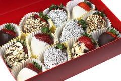 czekoladowe truskawki Fotografia Royalty Free