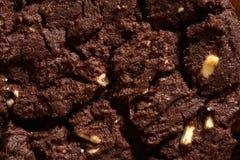 Czekoladowego ciastka zakończenia makro- szczegół Zdjęcie Stock