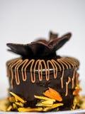 Czekoladowego torta ciasto Zdjęcie Stock