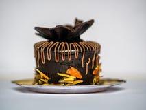 Czekoladowego torta ciasto Zdjęcie Royalty Free