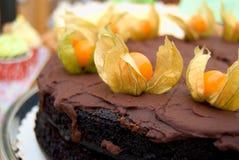 Czekoladowego torta dekorujący vith phisalis owocowi Zdjęcia Royalty Free