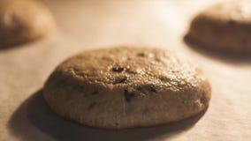 Czekoladowego układu scalonego ciastka piec w piekarnika timelapse zbiory