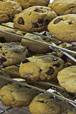 Czekoladowego układ scalony ciastka na stojakach Obraz Royalty Free