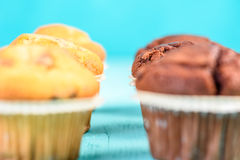 Czekoladowego układ scalony Muffins Obraz Royalty Free