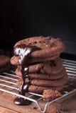 Czekoladowego układu scalonego ciastka Fotografia Stock