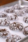Czekoladowi crinkle ciastka Fotografia Stock