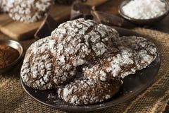 Czekoladowi Crinkle ciastka z Sproszkowanym cukierem Fotografia Stock