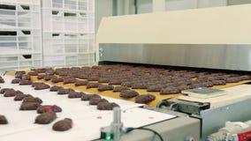 Czekoladowi cukierki kłama na konwejerze Cukierek fabryka zdjęcie wideo