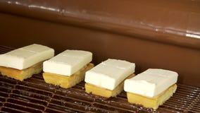 Czekoladowi cukierki na konwejeru pasku zbiory