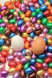 Czekoladowi i kurni Easter jajka Zdjęcie Stock