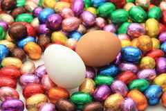 Czekoladowi i kurni Easter jajka Obraz Stock