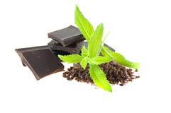 czekoladowi kawałki Zdjęcie Royalty Free