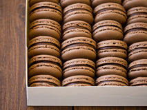 Czekoladowi macarons w pudełku Obraz Stock