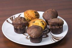 Czekoladowi muffins zdjęcia stock
