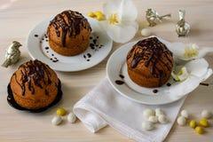 Czekoladowi muffins na lekkim drewnianym tle zdjęcie stock