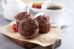 Czekoladowi Muffins z filiżanką kawy Zdjęcie Stock