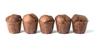Czekoladowi muffins z rodzynkami Fotografia Stock