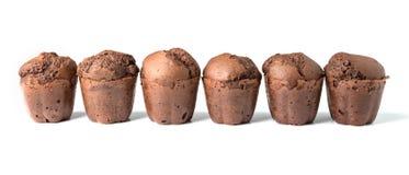 Czekoladowi muffins z rodzynkami Zdjęcia Stock