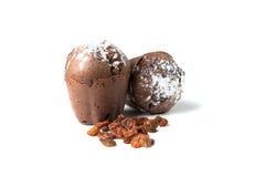 Czekoladowi muffins z rodzynkami Obraz Stock