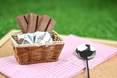 Czekoladowi opłatki i stali nierdzewnej łyżka na trawie w ogródzie, se fotografia stock