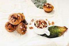 Czekoladowi punktów muffins z orzechami włoskimi, zdrowy weganinu pieczenie Fotografia Royalty Free