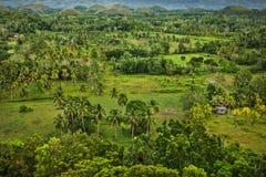 Czekoladowi wzgórza, Bohol wyspa, Filipiny fotografia stock