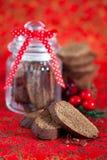 Czekoladowy biscotti Fotografia Royalty Free