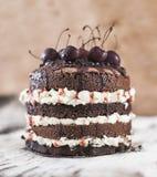 Czekoladowy biskwitowy wiśnia tort fotografia stock