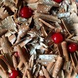 czekoladowy cherry izolacji white zdjęcia royalty free