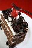 czekoladowy ciasto Zdjęcie Stock
