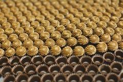 czekoladowy creme wypełniający nugata pralines Obraz Stock