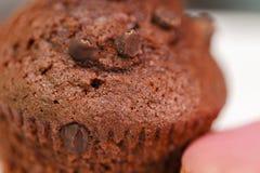 Czekoladowy filiżanka tort Fotografia Stock
