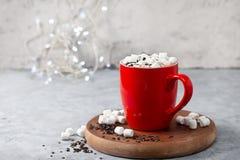 czekoladowy gorący marshmallow Fotografia Royalty Free