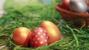 Czekoladowy królik wśród Wielkanocnych jajek zdjęcie wideo