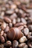 Czekoladowy praline i kakaowe fasole zdjęcie stock