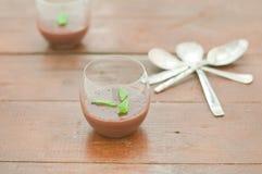 Czekoladowy pudding z imbirem i mennicą Obraz Royalty Free
