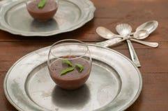 Czekoladowy pudding z imbirem i mennicą Zdjęcia Royalty Free