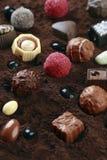 Czekoladowy rodzaj na kakao obraz stock