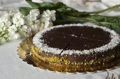 Czekoladowy tort Zdjęcie Stock